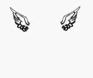 header and wings image