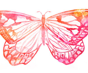 butterfly, pink, and drawing image