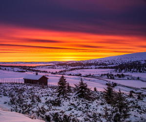 sunset and winter image