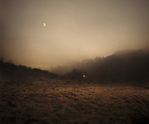 fog, landscape, and moon image