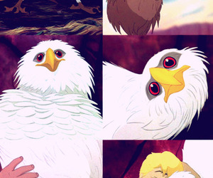 animal, boy, and the rescuers down under image