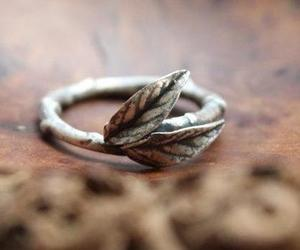 leaves and ring image
