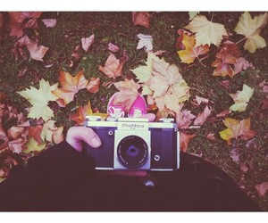 autumn and hipster image