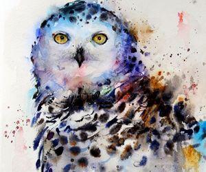 owl, art, and animal image