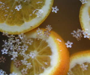 citrus, lemon, and flowers image