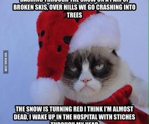 christmas, grumpy cat, and funny image