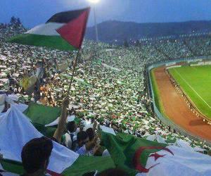 Algeria and palestine image