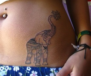 belly, elephant, and girl image