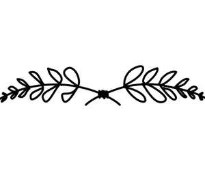branch, hand drawn, and knot image