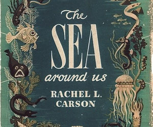book, book cover, and sea image