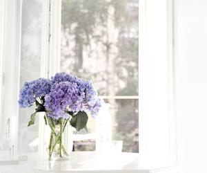 flowers, purple, and window image