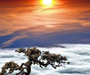 clouds, sun, and fog image