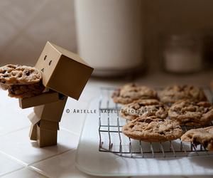 box, danbo, and Cookies image