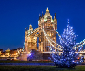 christmas, london, and lights image