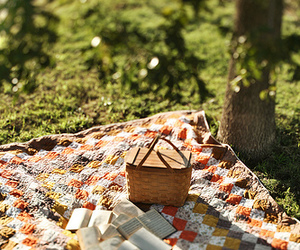books, spring, and pic-nic image