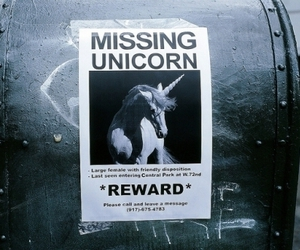 unicorn, missing, and reward image
