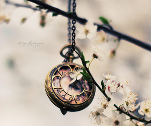 clock, flowers, and photography image