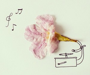 decorative, flower, and phonograph image