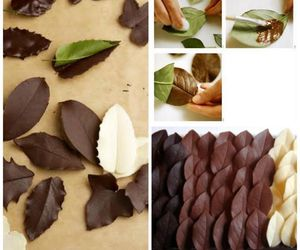 chocolate, diy, and leaf image