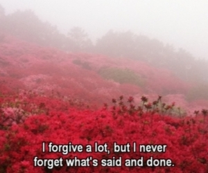 flowers, forgiveness, and grunge image