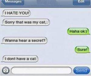 lol, quotes, and messages image