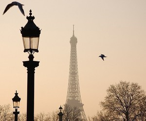 eiffel tower, fashion, and photography image