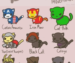 cat, Avengers, and thor image