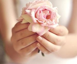 flower, pink, and hands image