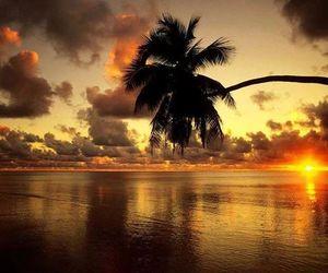 sunset, beach, and sea image
