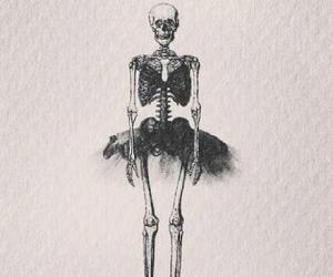 skeleton, ballet, and skull image