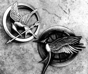 hunger games, the hunger games, and catching fire image