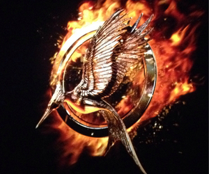 bird, movie, and the hunger games image