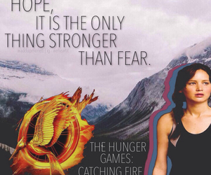 catching fire and thg image