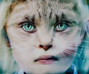 cat, face, and girl image