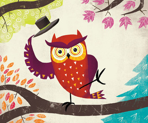 owl and illustration image