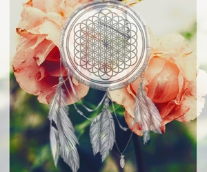 bands, edit, and bmth image