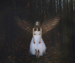 fantasy, fairy, and angel image