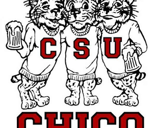 cali, chico, and college image