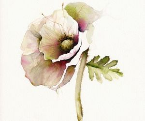 watercolor flower image