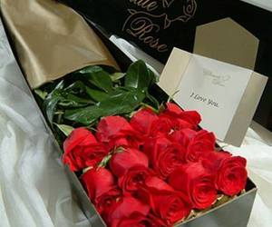 flowers, red roses, and gorgeous image