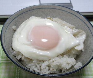 egg, food, and rice image