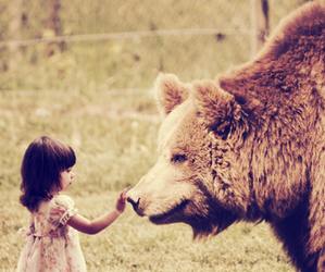 bear, girl, and cute image