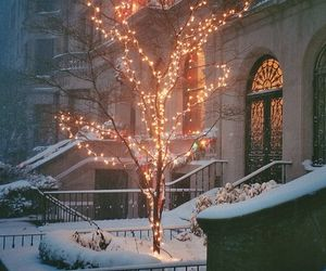 snow and winter beauty image