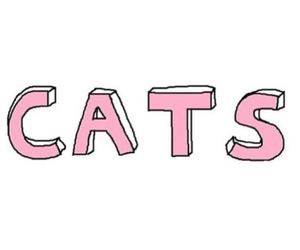 overlay, pink, and cat image