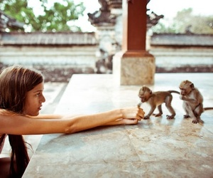 girl, monkey, and cute image