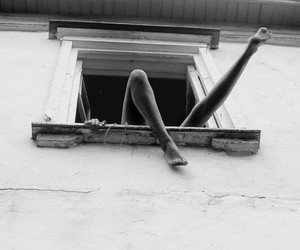 legs, window, and black and white image