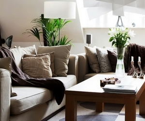 comfy, lamp, and living room image