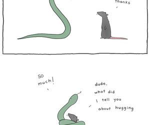 funny, cute, and hug image