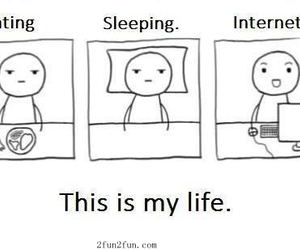 everyday, so me, and true image