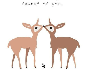 fawn and deer image